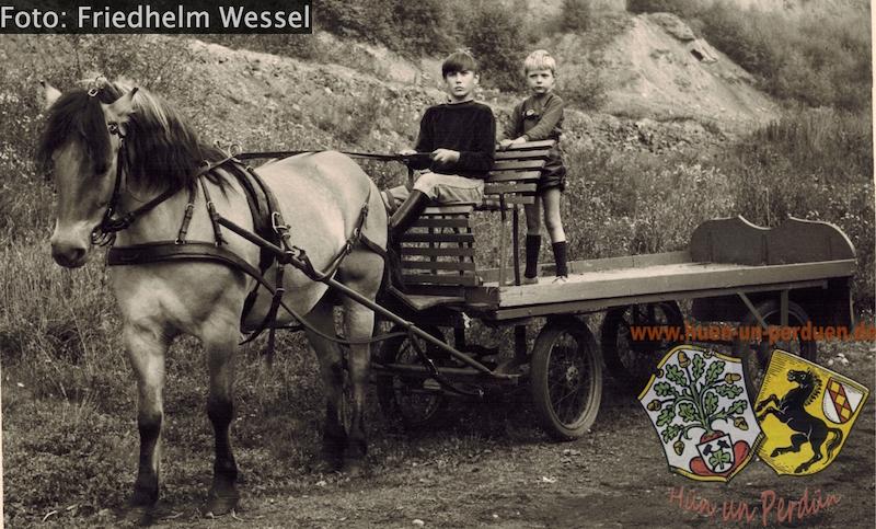 Datei:Halde MC mit Pferdewagen Friedhelm Wessel.jpg