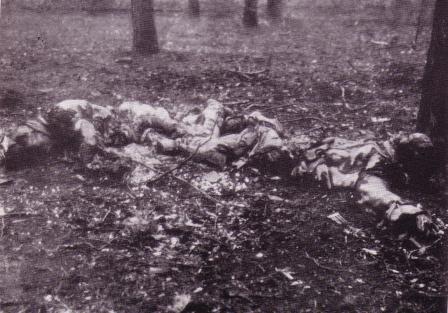 Datei:Von Reichswehr verstümmelte Arbeiter DGB-Archiv.jpeg