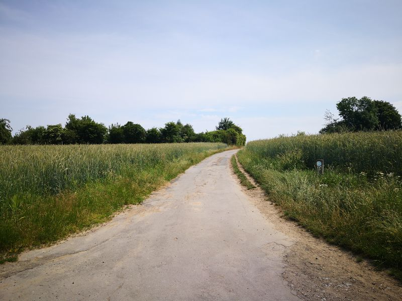 Datei:2019-Lange Straße-1.jpg