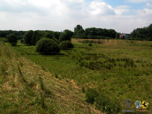 Monno-Storchengraben-2.jpg