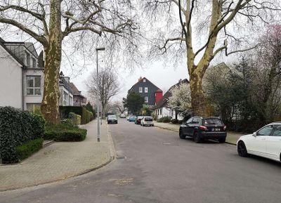 Ringstraße-März2019.jpg