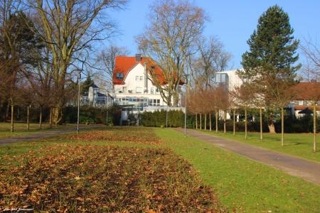Stadtgarten6.jpg