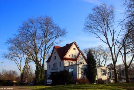 Stadtgarten7.jpg
