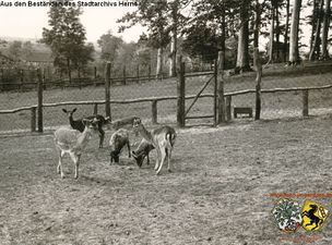 Tierpark Gysenberg 9.jpg